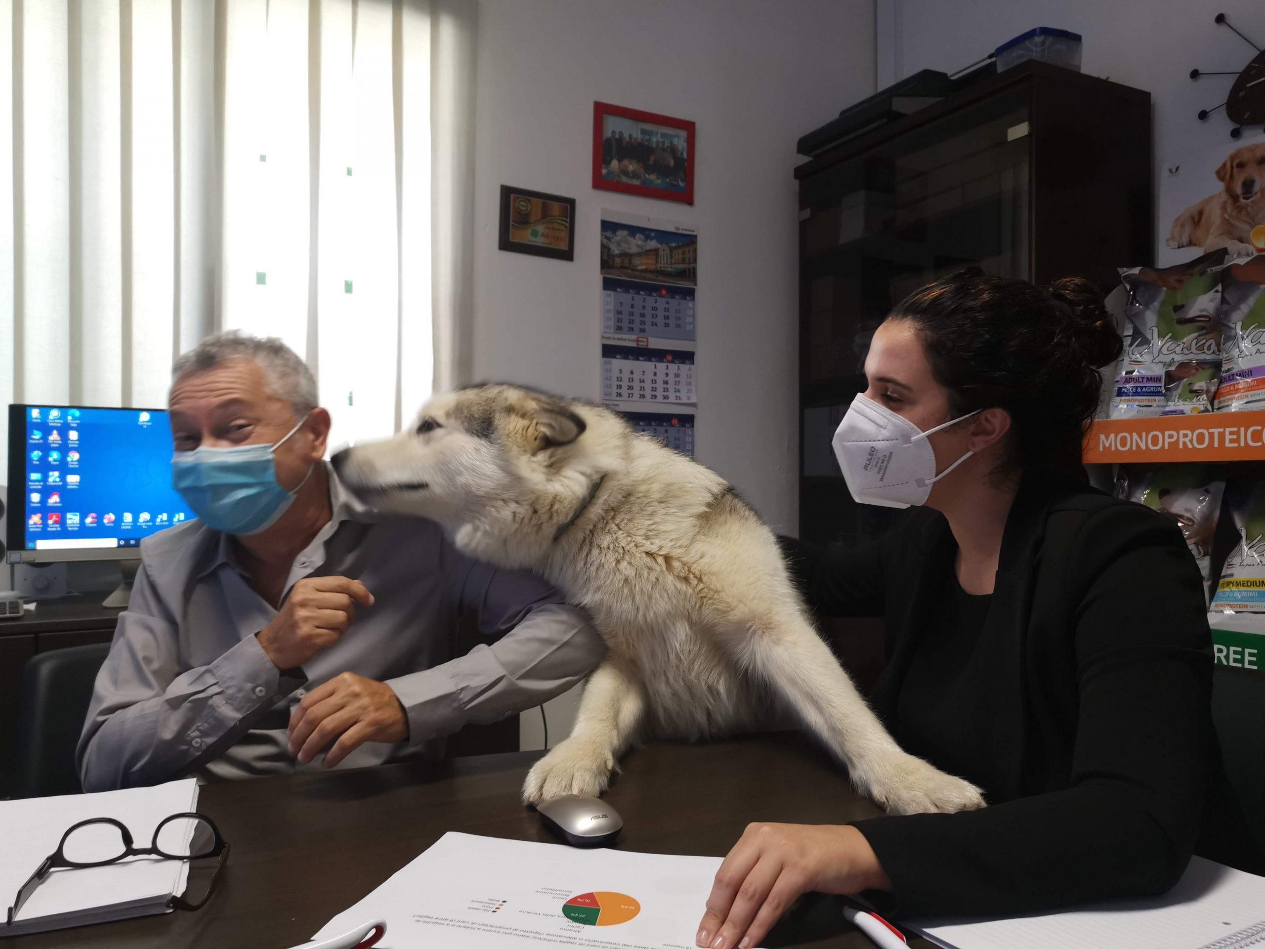 Sasha esprime la sua opinione durante un meeting interno